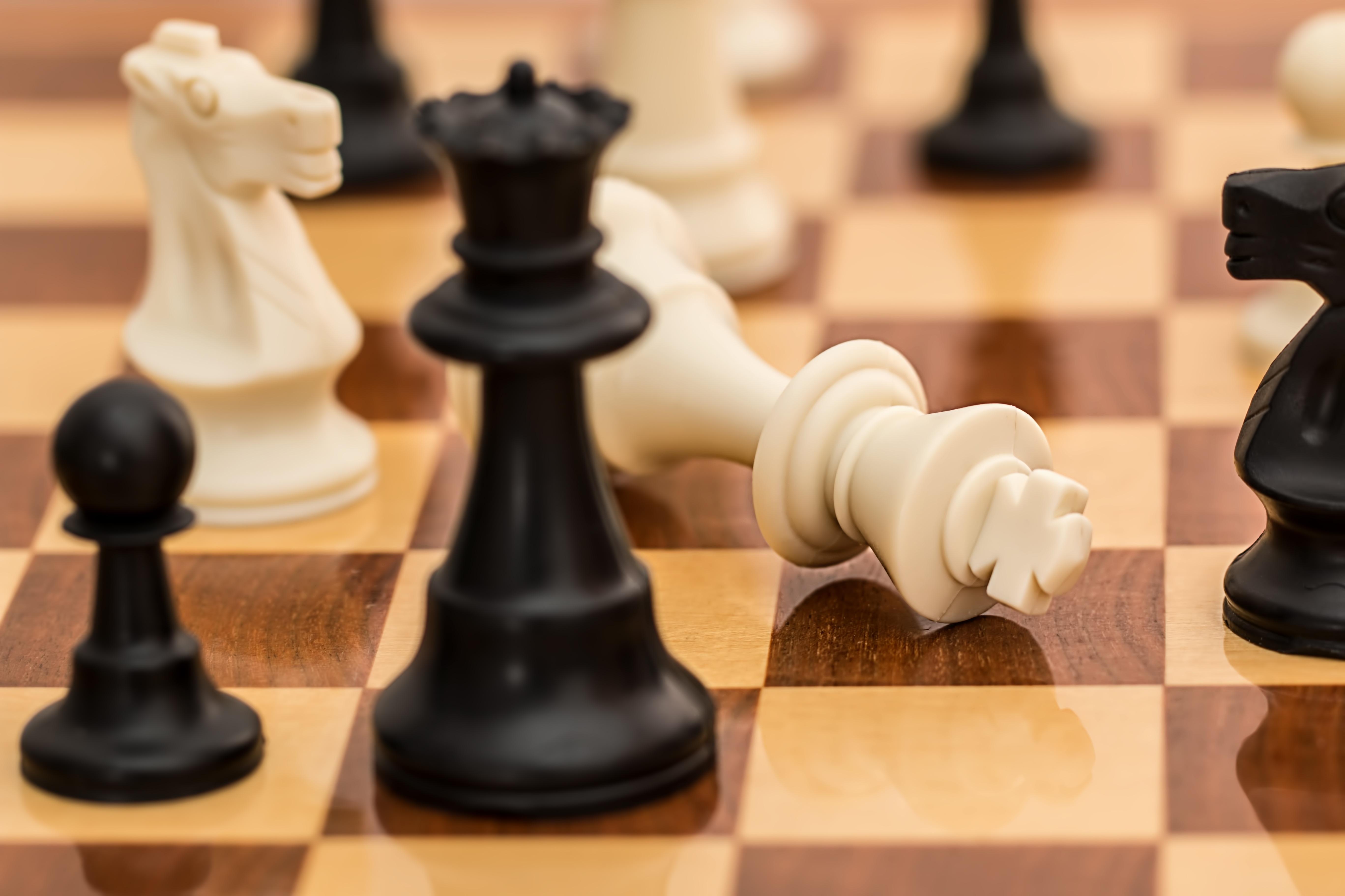 xadrez jogo de tabuleiro esporte xeque mate